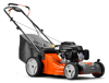 LC221R PUSH MOWER